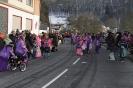 2013 Karnevalszumzug Ahrbrück_20