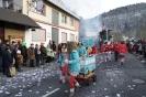 Karnevalsumzug 2013